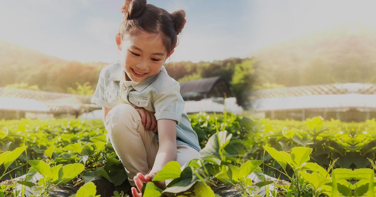 2020년 농림축산식품부 업무보고